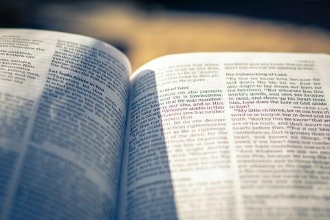 Verse of the Week - Believe